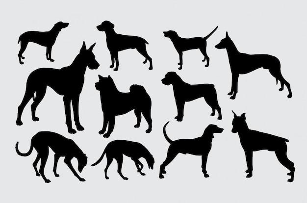 Una especie de perro mascota con silueta animal.
