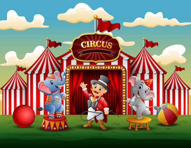 Espectáculo de circo con entrenador y dos elefantes.