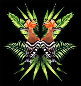 Espejo de hoopoe y reflejo de hojas tropicales.