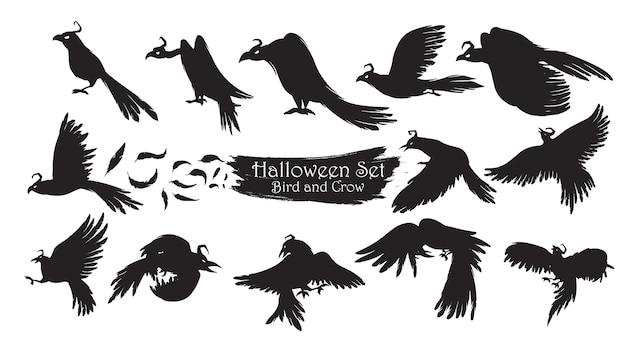 Espeluznante colección de silueta de cuervo de halloween