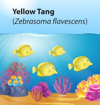 Espiga amarilla bajo el océano profundo