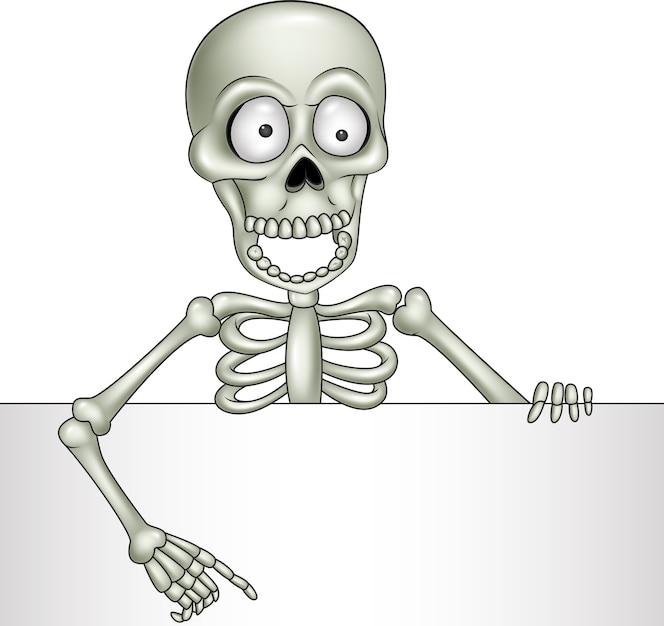 Esqueleto | Fotos y Vectores gratis