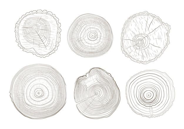 Esquema de círculos de árbol