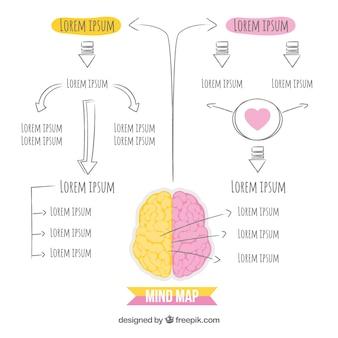 Esquema de cerebro dibujado a mano