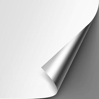 Esquina metálica plateada rizada de papel blanco con sombra mock up close up aislado sobre fondo gris