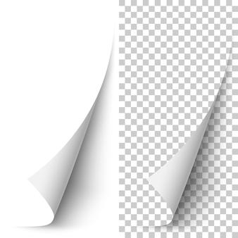 Esquina de papel vertical blanco vector enrollado
