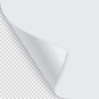 Esquina rizada de papel con sombra