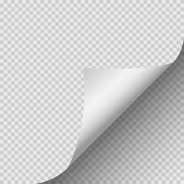 Esquina rizada de papel.