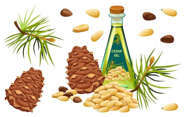 Establecer aceite de cedro, semillas y agujas.