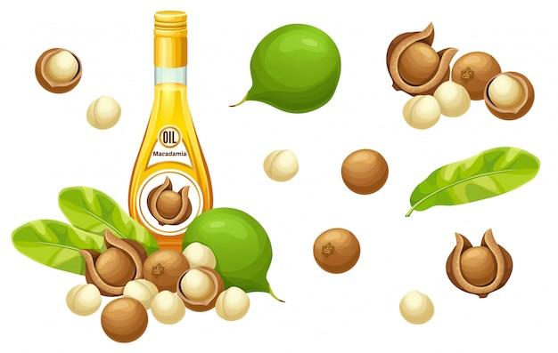 Establecer aceite de macadamia, semillas y hojas.