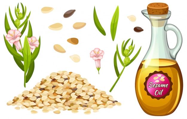 Establecer aceite de sésamo, semillas, flores y hojas.