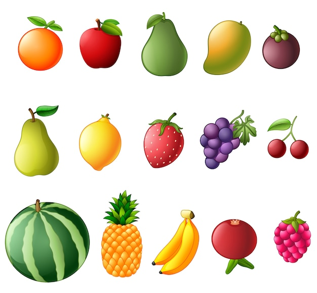 Establecer colección de fruta fresca