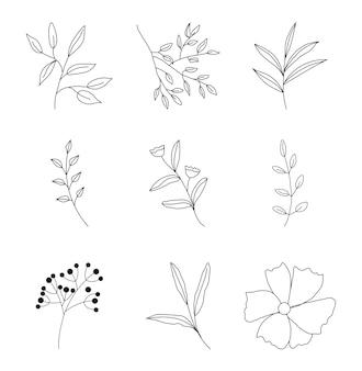Establecer contorno dibujado a mano hojas doodle de línea negra floral para invitaciones tarjetas pancartas