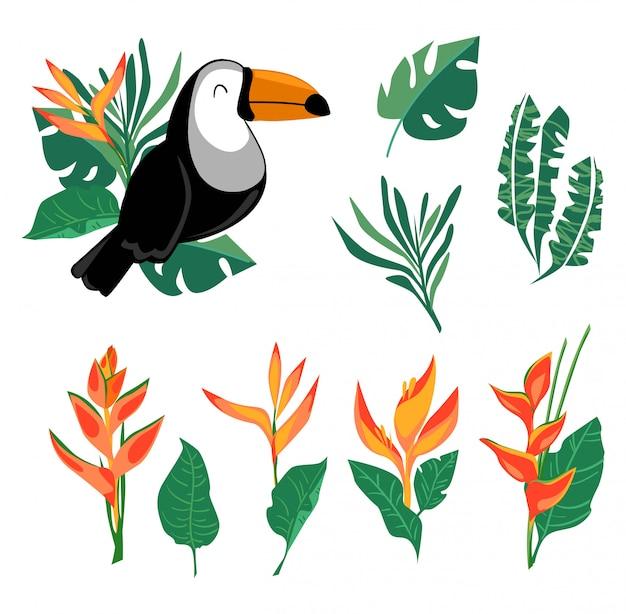 Establecer estampado y hojas de tucán, aves exóticas y flores de heliconia, aves tropicales.