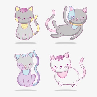 Establecer gatos lindos animales de compañía