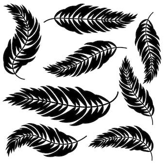 Establecer hojas negras aisladas planas que se curvan en diferentes direcciones