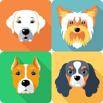 Establecer icono de diseño plano perros de diferentes razas