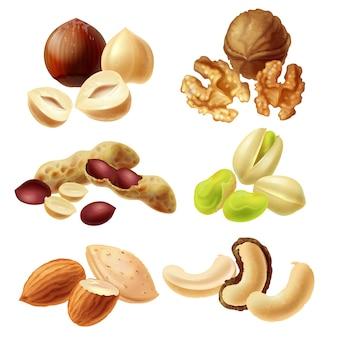 Establecer iconos de vector de frutos secos