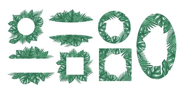 Establecer marco hojas tropicales de plátano coco monstera y ogawa
