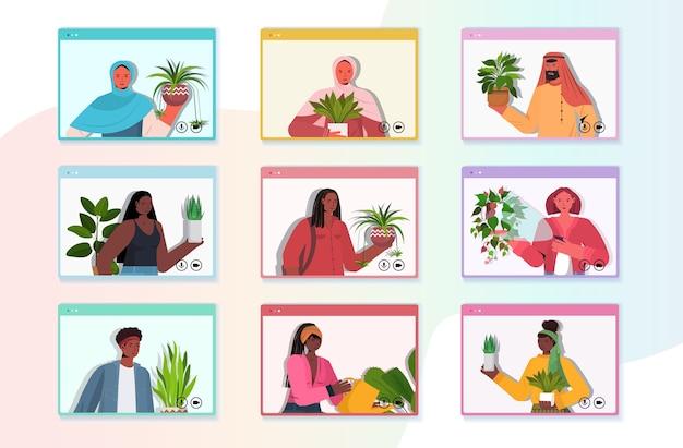 Establecer mezcla de personas de raza cuidando de las plantas de interior amas de casa discutiendo durante la videollamada en el navegador web vertical vertical de windows