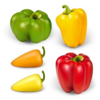 Establecer peppersr realista. la ilustración contiene malla de degradado.