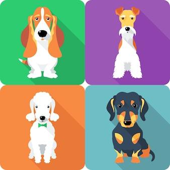 Establecer perros sentado icono diseño plano fox terrier