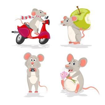 Establecer con el ratón o la rata. ratón en una moto, ratón con manzana, ratón con cámara y ratón con flores.
