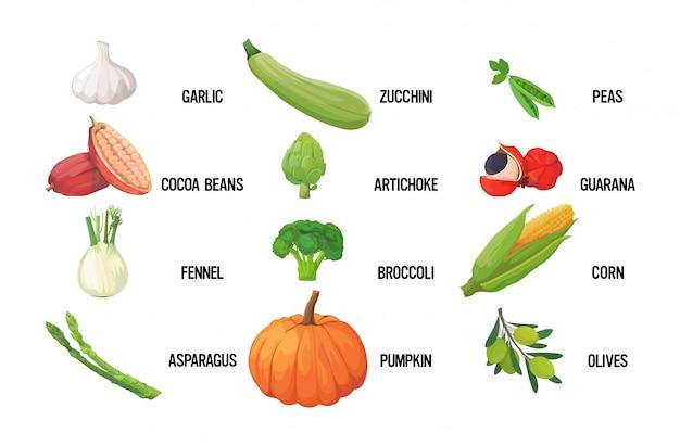 Establecer vegetales verdes frescos sabroso concepto de comida saludable vegetariana horizontal