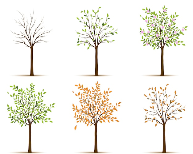 Estaciones del vector del árbol
