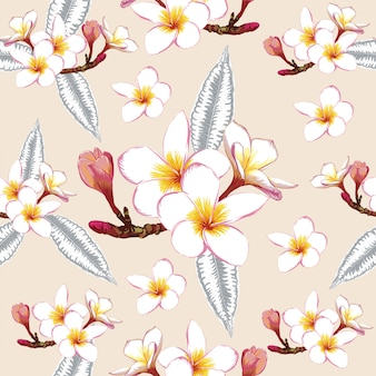 Estampado de flores sin fisuras flores blancas frangipani.