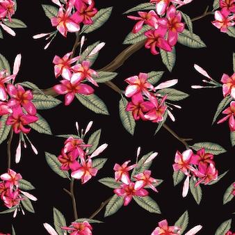 Estampado de flores sin fisuras flores de frangipani rosa sobre fondo negro