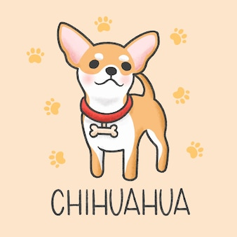 Estilo de dibujado a mano de dibujos animados lindo chihuahua