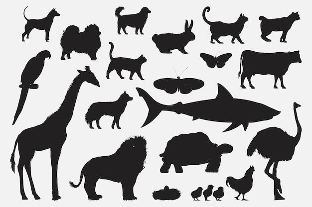 Estilo de dibujo de la ilustración de la colección de animales
