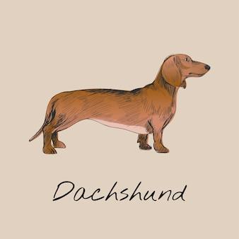 Estilo de dibujo de ilustración de perro