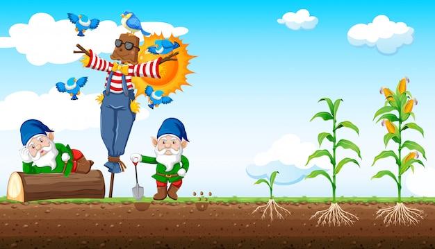 Estilo de dibujos animados de gnomos y espantapájaros con granja de maíz y fondo de cielo