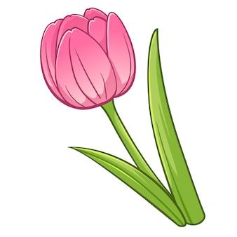 Estilo de dibujos animados de tulipán