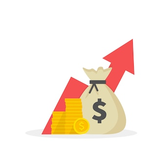 Estrategia de aumento de ingresos, alto rendimiento financiero de la inversión, recaudación de fondos, crecimiento de los ingresos, tasa de interés, pago de préstamos, dinero de crédito, saldo presupuestario plano .