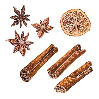 Estrellas de anís, rodaja de naranja seca y canela acuarela ilustración
