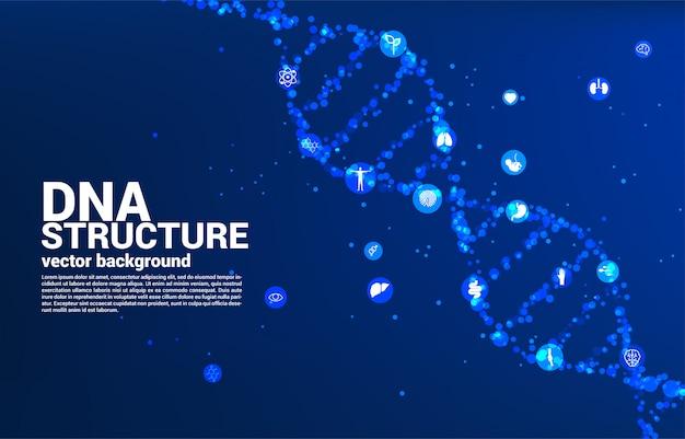 Estructura genética del adn desde el punto al azar con el icono. concepto de fondo para biotecnología y biología científica.