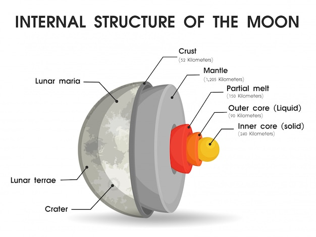 La estructura interna de la luna que se divide en capas.