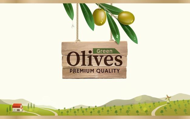 Etiqueta de aceituna verde con rama de olivo realista sobre fondo de granja de olivo verde, diseño para envases de aceitunas enlatadas y aceite de oliva.