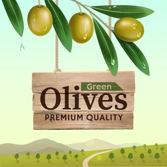 Etiqueta de aceitunas verdes con rama de olivo realista en paisaje de verano
