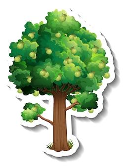 Etiqueta engomada del árbol de guayaba en blanco