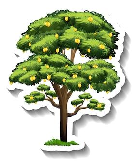 Etiqueta engomada del árbol de limón sobre fondo blanco