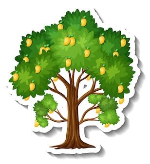 Etiqueta engomada del árbol de mango sobre fondo blanco