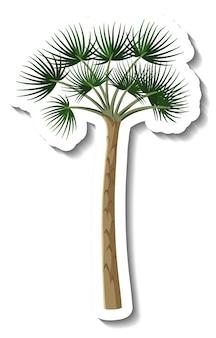 Etiqueta engomada del árbol tropical en blanco