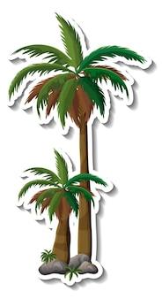 Etiqueta engomada de la palmera sobre fondo blanco