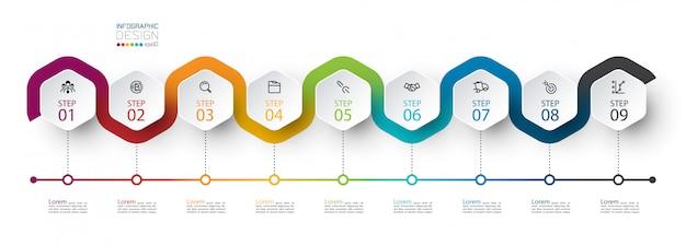Etiqueta hexagonal con línea de color vinculada infografía