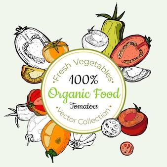 Etiqueta vintage de tomate vegetales comestibles