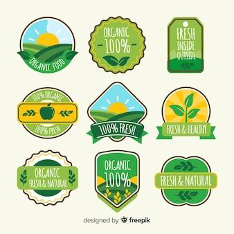 Etiquetas de comida orgánica en diseño plano